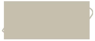 ziachon logo
